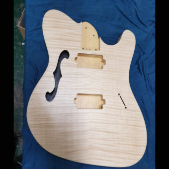 Build Slot 16 - Thicket Semi-Hollow
